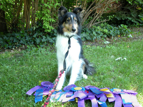 Jayda and a big heap o' ribbons